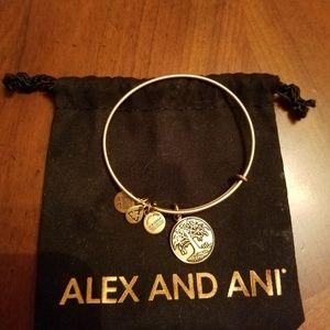 Alex and Ani Jewelry - Alex and Ani bracelet. NWOT